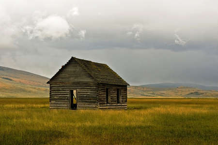 An abandoned cabin stands in a ranch meadow.
