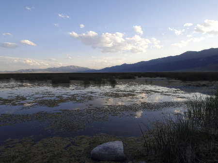 An evening sky reflected in a marsh. Stock Photo