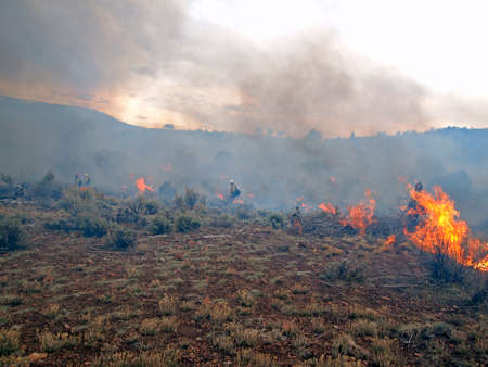 forest management: Wildland fire fighters use prescribed fire to manage rangeland vegetation. Stock Photo