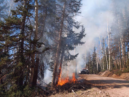responds: A fire engine responds to a forest fire along the road.