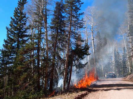 responds: A fire engine responds to a forest fire. Stock Photo