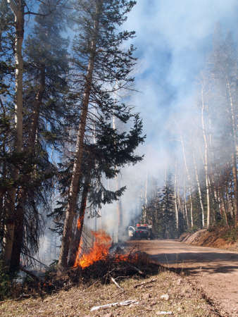 forest fire: Un coche de bomberos llega a la escena de un incendio forestal.
