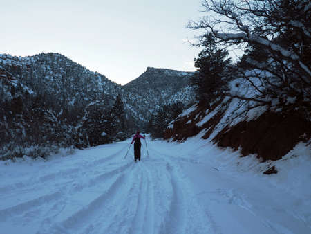 A cross country skier in the canyon after sunset. Imagens