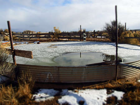 A stock watering trough in a ranch yard.