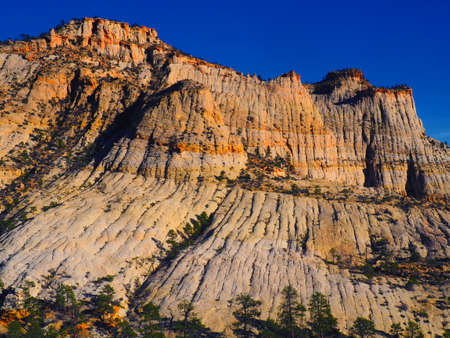 A large sandstone butte with pine trees. Imagens - 133460274
