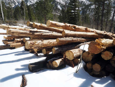 Equipment and wood decks at a logging site. Imagens