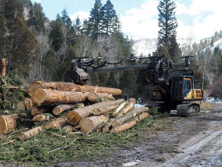Equipment and wood decks at a logging site. Imagens - 133732047