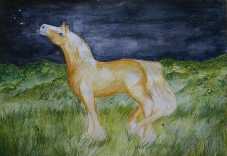 aquarel: A watercolour painting of a golden palomino horse gazing at the stars