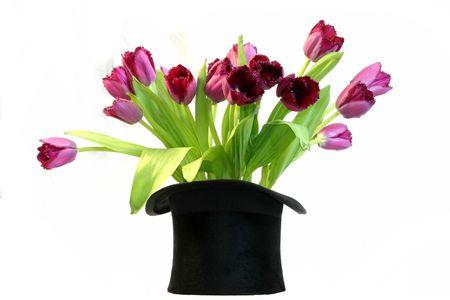 tophat: tophat un nero su bianco isolati con tulipani