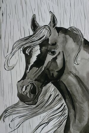 A watercolor painting of a black arabian horse in the rain