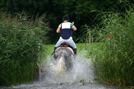 A grey horse jumping out of the water during a cross-country race