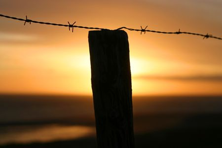 A barb wire fence at sunrise photo