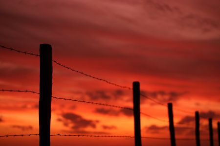 A barbwire fence at sunset photo