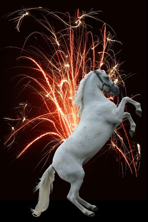 newyear night: Happy new year! A white rearing horse against a fountain of fire. Stock Photo