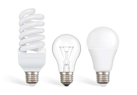 packing for different bulbs vector