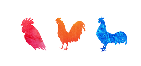 flamy: Set of  watercolor roosters. Hand drawn illustration isolated on white. It may be used for design of a t-shirt, bag, postcard, a poster and so on. Illustration