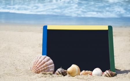 Black board with seashells on sandy beach