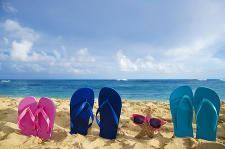 Flip flops and starfish with sunglasses on sandy beach in Hawaii, Kauai