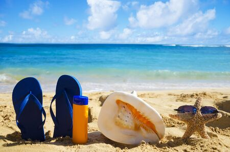 Blue Flip flops, seashell, sunscreen and starfish with sunglasses on sandy beach in Hawaii, Kauai photo