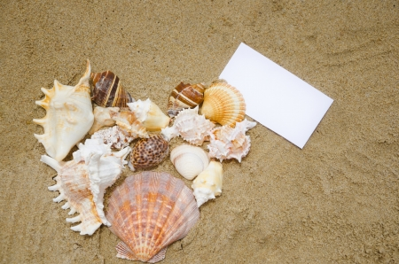 Heart shape of seashells and paper card on sandy beach photo