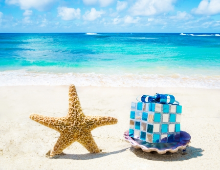 beach animals: Starfish and seashell with Christmas decoration on sandy beach in sunny day- holiday concept