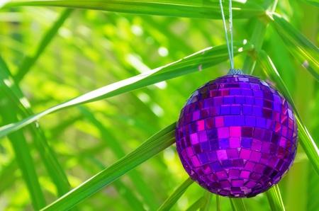 Christmas ball on palm tree - holiday concept