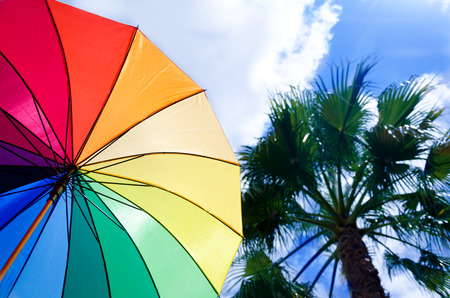 Rainbow umbrellas background against a sky and palm tree