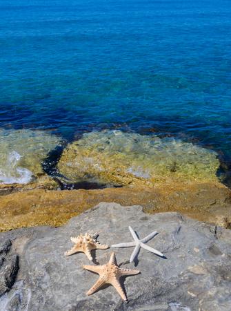limassol: Three starfishes next to sea, Cyprus, Limassol Stock Photo
