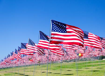 Amerikaanse vlaggen achtergrond op een groen veld
