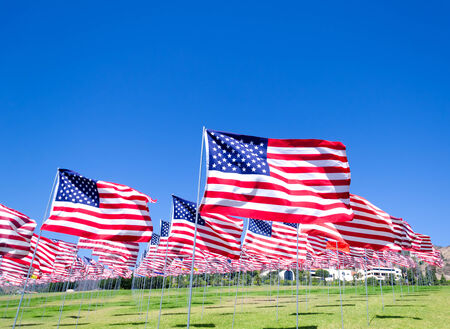 american flag: American flags background on a green field