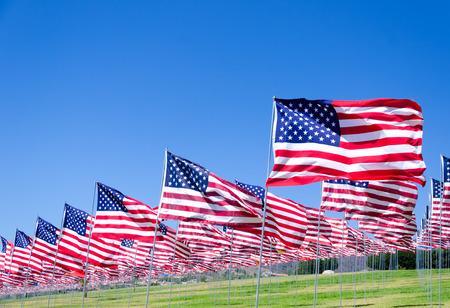 bandera blanca: Fondo banderas americano en un campo verde