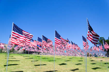 green flag: American flags background on a green field