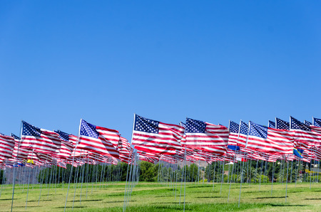 Fondo banderas americano en un campo verde Foto de archivo - 31675044