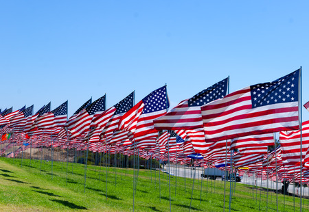 American flags background on a green field photo