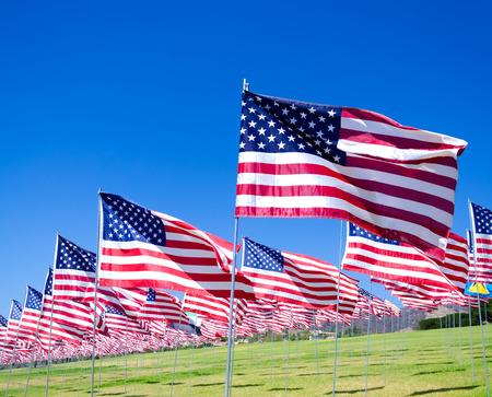 美国国旗的背景是绿色的田野