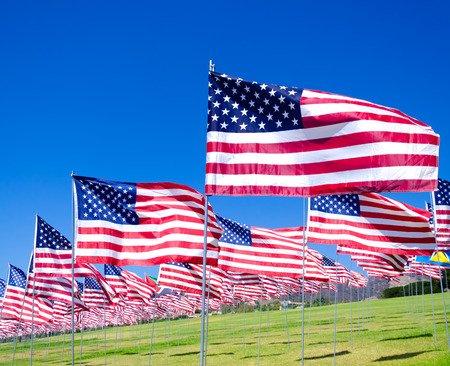 American flags background on a green field