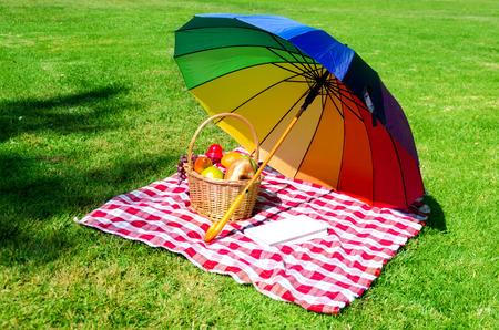 rainbow umbrella: Rainbow umbrella, book and Picnic basket with fruits on the grass Stock Photo