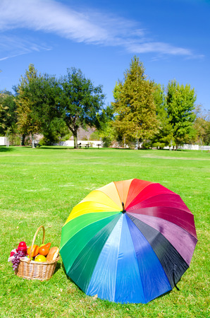 rainbow umbrella: Rainbow umbrella and Picnic basket with fruits on the grass