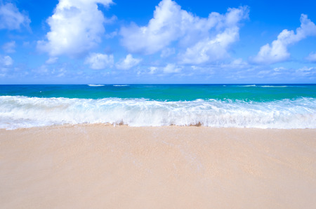 Sandy beach background next to ocean, Hawaii, Kauai 免版税图像