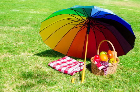 Rainbow umbrella and Picnic cloth and basket with fruits on the grass background