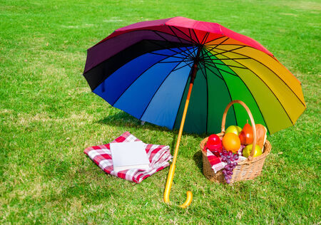 rainbow umbrella: Rainbow umbrella, book, and Picnic cloth and basket with fruits on the grass background Stock Photo