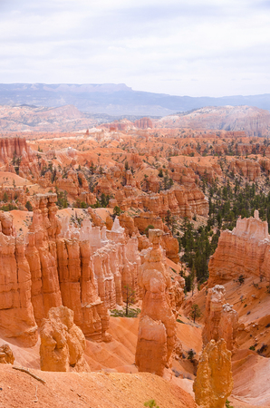 bryce canyon: Red hoodoo rocks in Bryce Canyon National park, Utah, USA