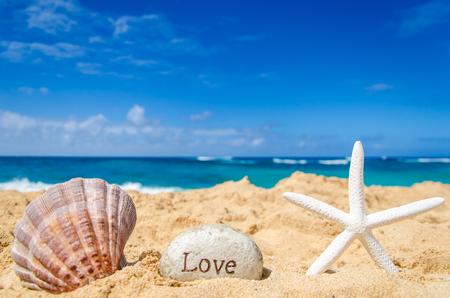 romantic beach: Starfish with seashell and sign Love on the sandy beach in Hawaii, Kauai