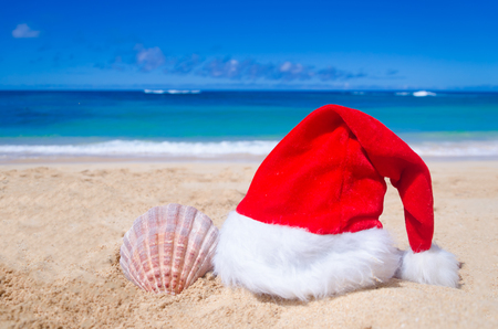 beach happy new year: Merry Christmas and Happy New Year background with Santa Claus Hat and seashell on the tropical beach near ocean in Hawaii