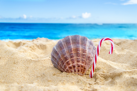 beach happy new year: Merry Christmas and Happy New Year background, candy and seashell on the tropical beach near ocean in Hawaii Stock Photo