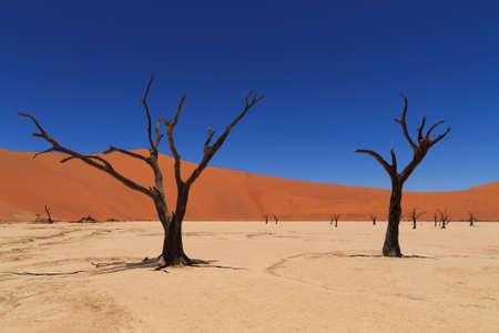 Panorama vanaf Dead Vlei, Sossusvlei Namibië Stockfoto