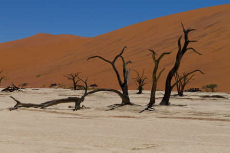 A view from Dead Vlei Sossusvlei Namibia photo