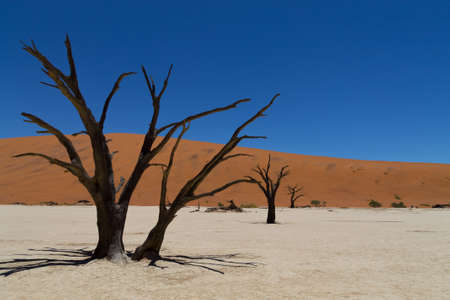 desolation: A view from Dead Vlei, Sossusvlei Namibia Stock Photo