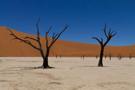 A view from Dead Vlei, Sossusvlei Namibia photo