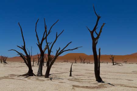 vlei: A view from Dead Vlei, Sossusvlei Namibia Stock Photo